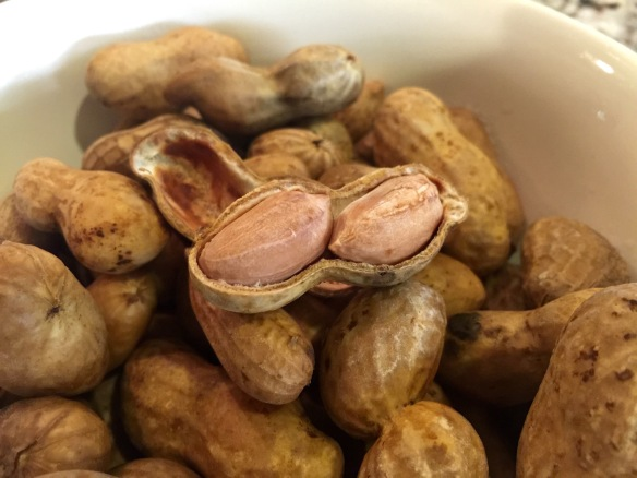 I sure do love me some boiled peanuts.